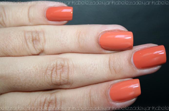 alana-252520x-252520camelo-2525204-1_thumb